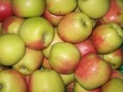 Äpfel BVH